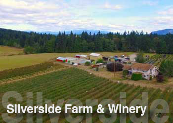 Silverside Farm & Winery preview